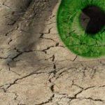 Akių klinikoje atliekame Sausų akių diagnostiką